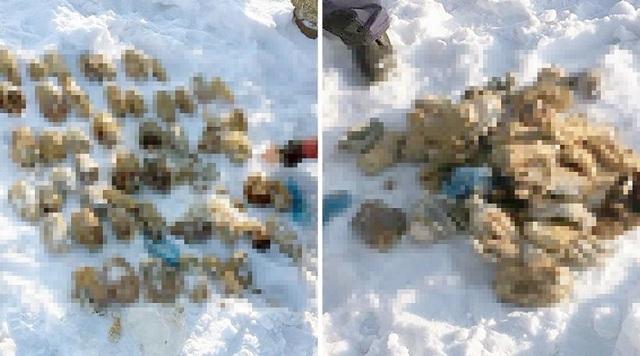 Μυστήριο με βαλίτσα γεμάτη κομμένα χέρια στα σύνορα Ρωσίας-Κίνας