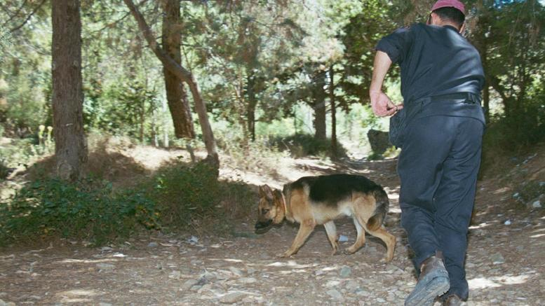 Βρέθηκε ο 9χρονος που χάθηκε σε δάσος στα Καλάβρυτα