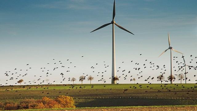 «Στα κάγκελα» οι παραγωγοί αιολικής ενέργειας