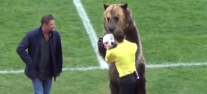 Εβαλαν αρκούδα να κάνει κόλπα πριν από ποδοσφαιρικό ματς. Ξεσηκώθηκαν οι φιλοζωικές [βίντεο]