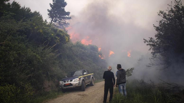 Εξακολουθούν να επιχειρούν ισχυρές δυνάμεις πυροσβεστικής στην Ηλεία