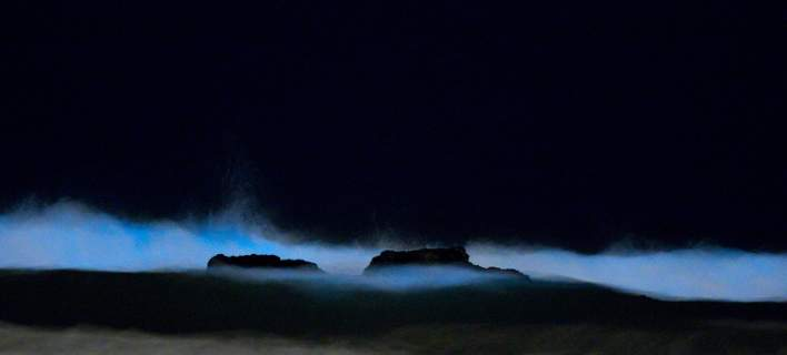 Η «κόκκινη παλίρροια» τυλίγει τις ακτές της Καλιφόριας με μία απόκοσμη μπλε λάμψη [εικόνες]
