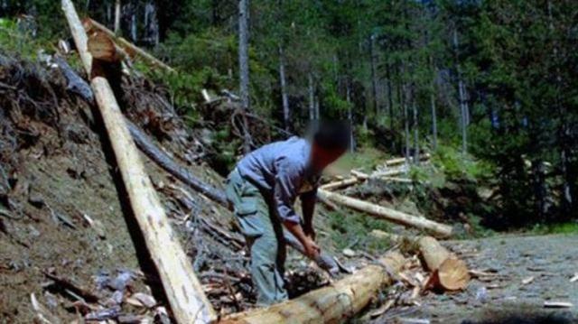 38χρονος έπεσε στον γκρεμό τη στιγμή που έκοβε δέντρο στη Σπερχειάδα