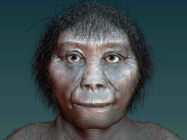 Αρχαιολόγοι ανακάλυψαν την καταγωγή των hobbits