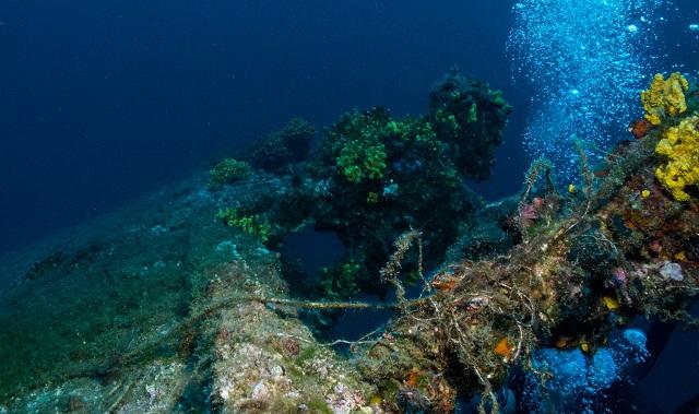 Εικόνες από Βολιώτες δύτες στο «Diver» της Ευρώπης