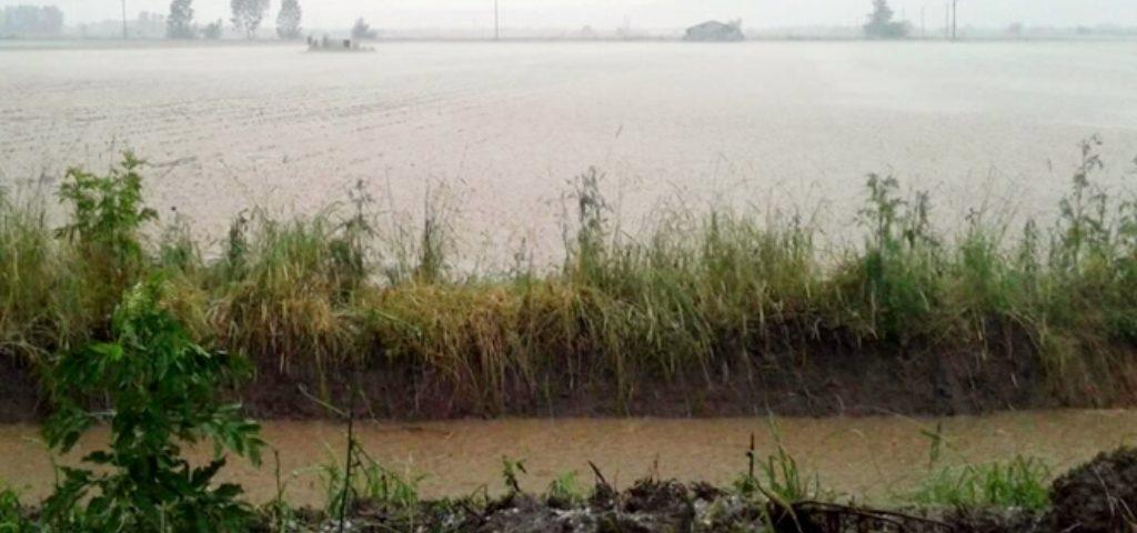 Χαλαζόπτωση και πλημμυρισμένες καλλιεργήσιμες εκτάσεις στο νομό Καρδίτσας
