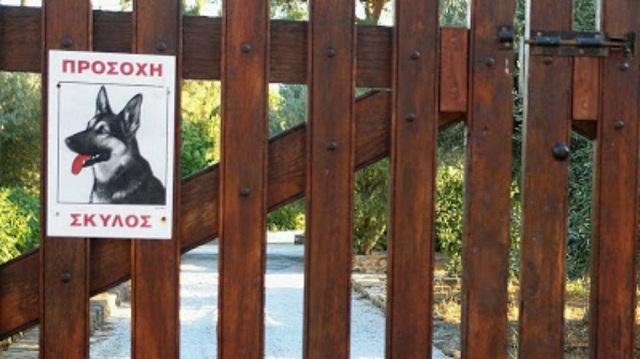 Σκύλος πήρε στο κυνήγι διαρρήκτες στη Λήμνο