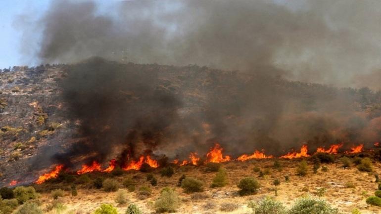 Υπό έλεγχο η δασική πυρκαγιά στην Κύμη Ευβοίας