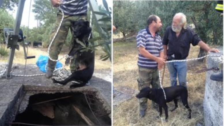 Εριξαν ζωντανό σκύλο σε πηγάδι για να το ξεφορτωθούν!