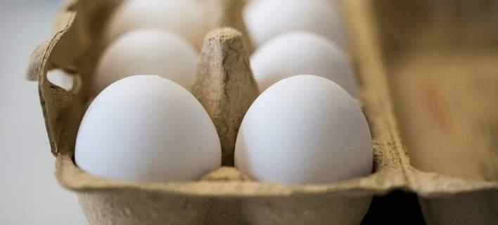 Συναγερμός στη Γερμανία για μολυσμένα αυγά με fipronil. Αποσύρθηκαν χιλιάδες από τα ράφια