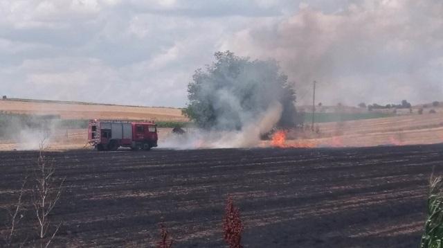 Πυρκαγιά απείλησε επιχειρήσεις στο δρόμο Λάρισας –Καρδίτσας