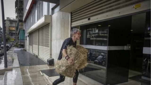 Ακτιβιστές πέταξαν σανό στα γραφεία των Ανεξάρτητων Ελλήνων