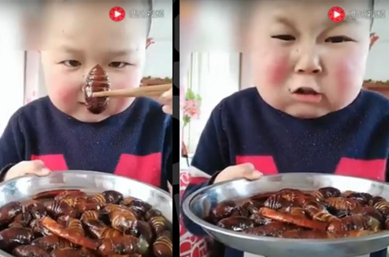 Κινεζάκι τρώει ό,τι κινείται (video)