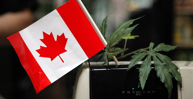 O Καναδάς νομιμοποιεί την ψυχαγωγική χρήση της κάνναβης