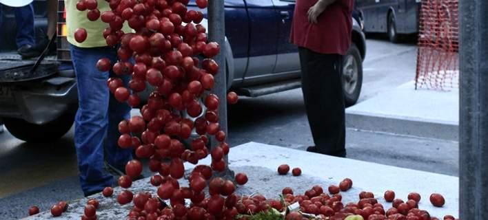 Βιοτεχνία σάλτσας από τον Εβρο καλεί να... πάρουν με τις ντομάτες βουλευτές, Κοτζιά, Τσίπρα