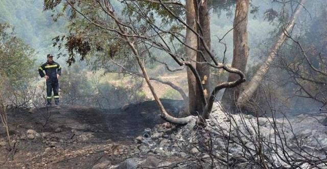 Υπό πλήρη έλεγχο η πυρκαγιά στην Κύπρο: Συνελήφθη 35χρονος για εμπρησμό