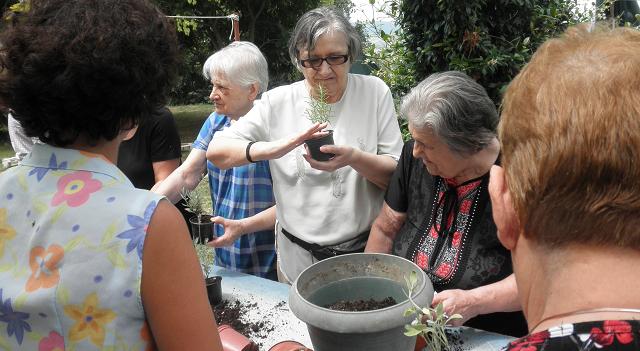 Οι ηλικιωμένοι του ΚΗΦΗ Βόλου στα «Ηλιοτρόπια»