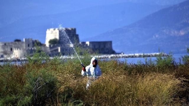 Εννέα κρούσματα του ιού του δυτικού Νείλου σε τρεις περιοχές της χώρας