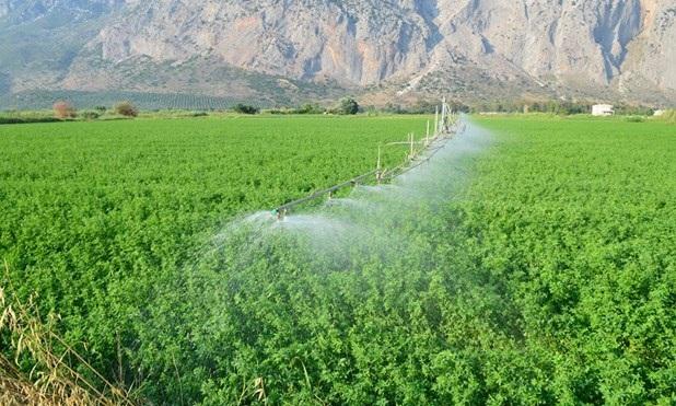 Στο μέτρο νέων αγροτών εντάσσονται 281 επιλαχόντες στη Θεσσαλία [ονόματα]