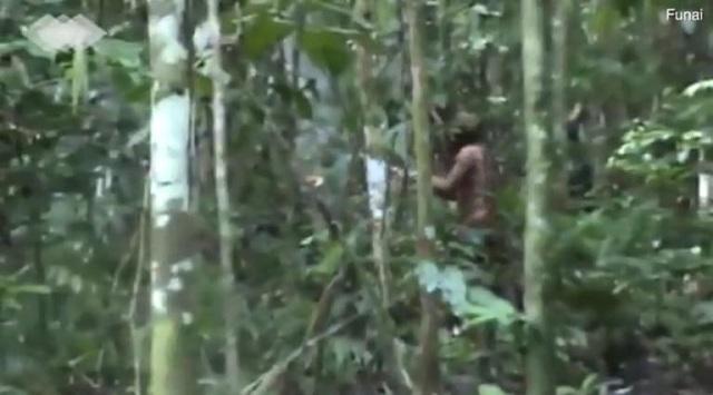 Σπάνια πλάνα: Αυτός είναι ο τελευταίος επιζών φυλής του Αμαζονίου –Τους σκότωσαν αγρότες