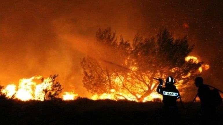 Ζάκυνθος: Πυρκαγιά στην περιοχή Λιθάκια