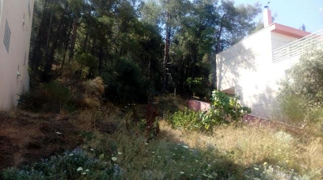 Καμπανάκι για τα σπίτια κοντά στο λόφο της Γορίτσας για το φόβο πυρκαγιάς