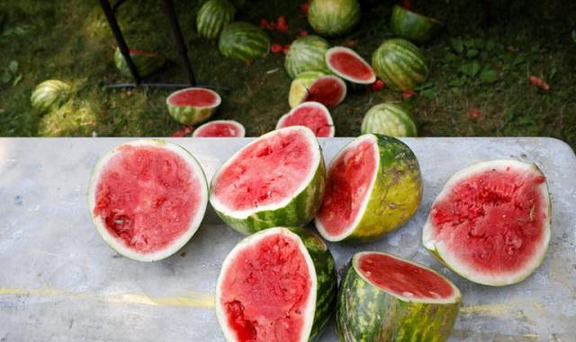 Κίνα: Τρομερή ζήτηση για κλιματιστικά… καρπούζι και παγωτό