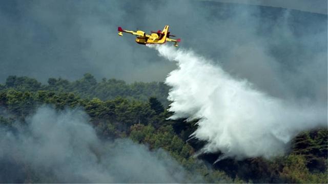 Σε ύφεση η φωτιά στη Ζάκυνθο -Υπό μερικό έλεγχο σε Πάρο και Εύβοια