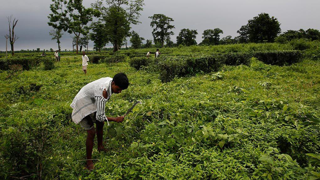 Απεργούν 400.000 εργάτες στην Ινδία για αύξηση 40 λεπτών
