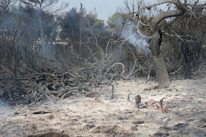 Αυξήθηκε ο αριθμός των θυμάτων της φωτιάς: Στους 94 πλέον οι νεκροί