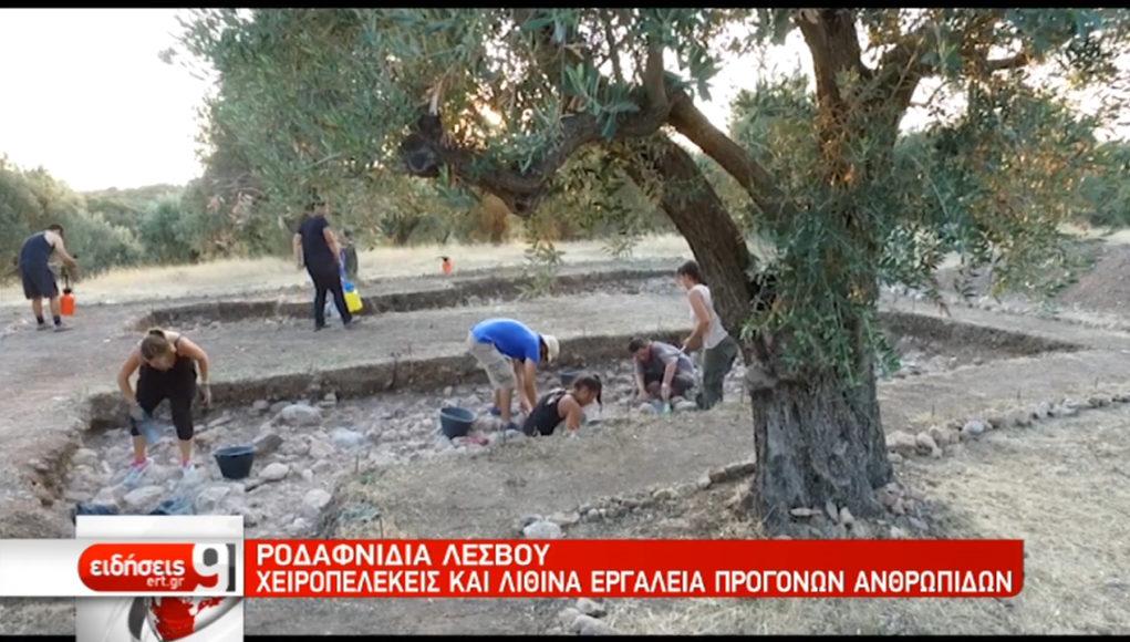 Την παρουσία των Homo Neandertalis στο Αιγαίο αποκαλύπτει ανασκαφή στη Λέσβο (video)