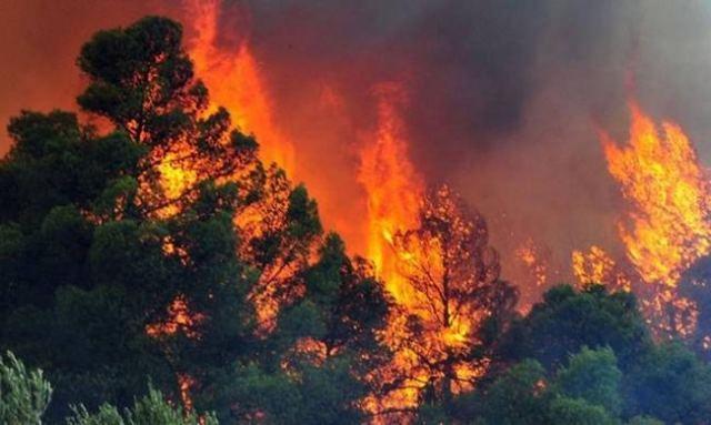 Πυρκαγιά στον Άγιο Στέφανο Αττικής