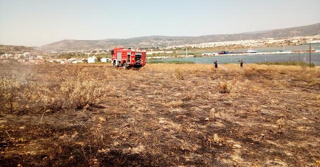 Συναγερμός για φωτιά σε ξερά χόρτα στον αρχαιολογικό χώρο στα Πευκάκια
