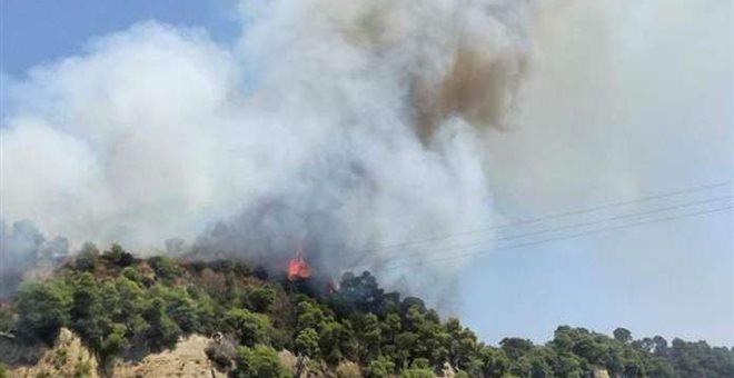 Νέο πύρινο μέτωπο στην Ηλεία. Μαίνεται η πυρκαγιά στη Δαφνιώτισσα [φωτό]
