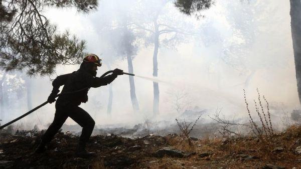 Φωτιά σε δασική έκταση στην Εύβοια