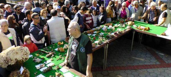 Γιορτή μανιταριού στα Μετέωρα