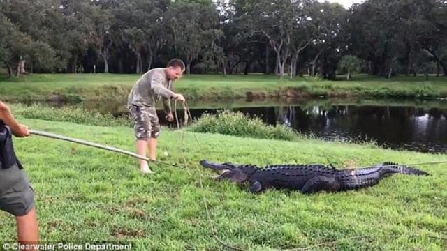 ΗΠΑ: Γλύτωσε από του… αλιγάτορα τα δόντια ενώ έπαιζε γκολφ [βίντεο]