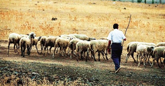 Παρέμβαση Νασίκα για την επίλυση των προβλημάτων κτηνοτρόφων και αγροτών