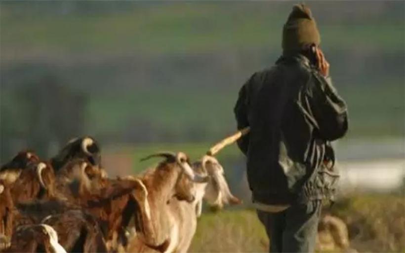 Αγνοείται 74χρονος βοσκός σε δασική περιοχή της Βρύναινας