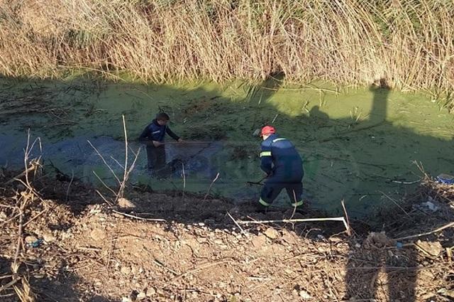 «Χτενίζουν» το σημείο που βρέθηκε το κρανίο στην Πρέβεζα