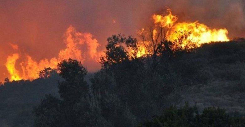 Μεγάλη φωτιά στη Λεμεσό – Έκλεισαν δρόμοι