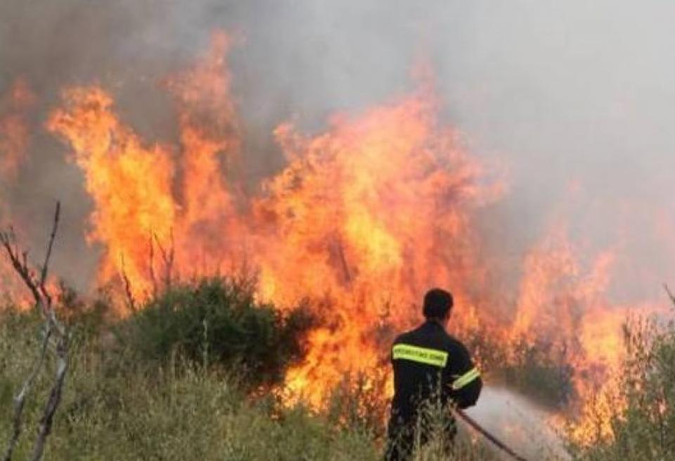 Σε εξέλιξη πυρκαγιά στην περιοχή Σέτα Ευβοίας