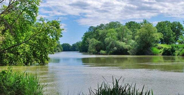 Από τα «πιο βρώμικα ποτάμια στην Ελλάδα» ο Πηνειός