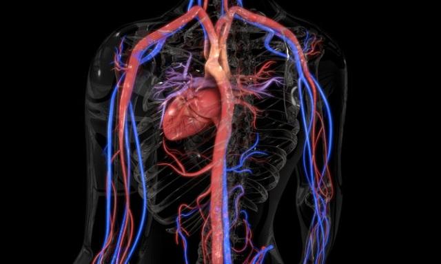 Αγγειίτιδα: Τα «αθώα» συμπτώματα από σοβαρό πρόβλημα στα αγγεία. Ποια είναι η θεραπεία