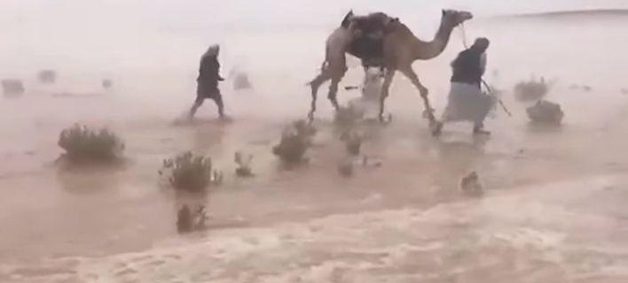 Kαταιγίδα μετατρέπει σε λίμνη την έρημο της Σαουδικής Αραβίας [βίντεο]