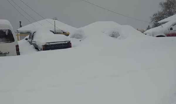 «Πνιγμένο» στο χιόνι και χωρίς ρεύμα το Πουρί Πηλίου [photos]