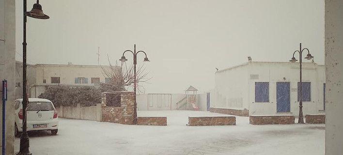 Χιόνισε και στην Τήνο [εικόνες]