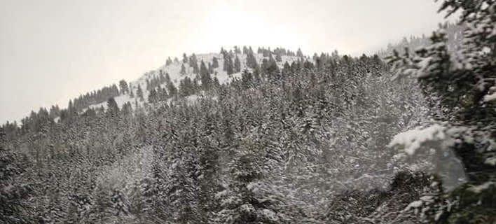 Το Μαίναλο στα λευκά: Πυκνό χιόνι έχει σκεπάσει τα πάντα [εικόνες]