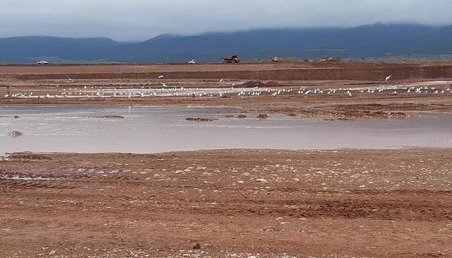 Προχωρά η κατασκευή της λιμνοδεξαμενής Ξηριά στον Αλμυρό