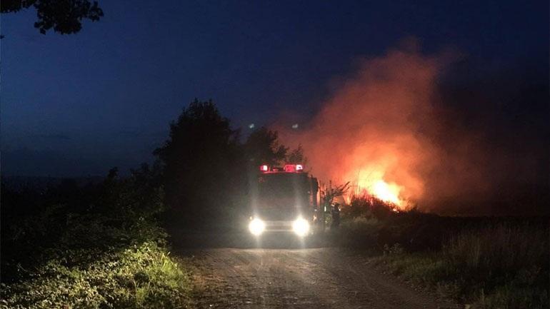Τρίκαλα: Υπό μερικό έλεγχο η πυρκαγιά στο Αρματωλικό